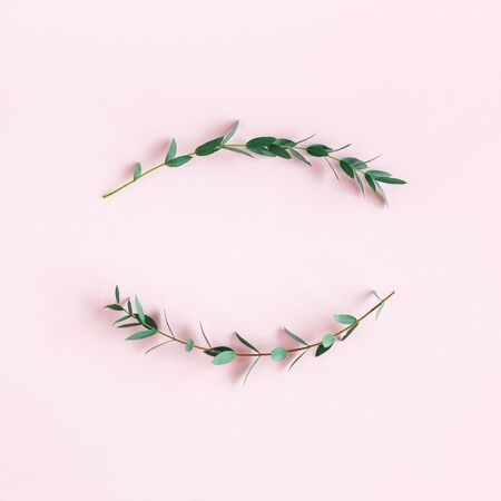 Flowers composition. Wreath made of eucalyptus leaves on pink background. Spring concept. Flat lay, top view, copy space, square
