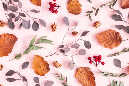 Autumn composition. Pattern made of dried leaves, flowers on pink background. Autumn, fall concept. Flat lay, top view Stock fotó - 152481010