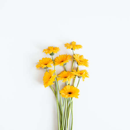 Autumn composition. Gerbera flowers on white background. Autumn, fall concept. Flat lay, top view, copy space Stock fotó