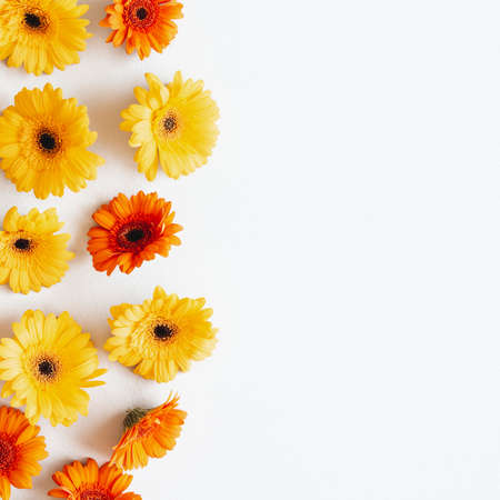 Autumn composition. Gerbera flowers on white background. Autumn, fall concept. Flat lay, top view, copy space Stock fotó - 152481854