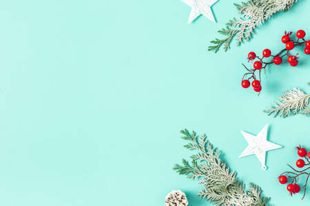 Christmas composition. Christmas plants on blue backround. Flat lay, top view Stock fotó - 156321683