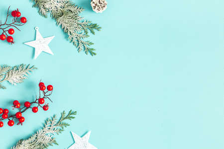 Christmas plants on blue backround. Christmas, winter concept. Flat lay, top view