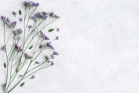 Flowers composition. Purple flowers and eucalyptus leaves on concrete gray background. Flat lay, top view