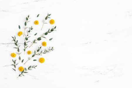 Flowers composition. Yellow flowers and eucalyptus leaves on marble background. Flat lay, top view 写真素材