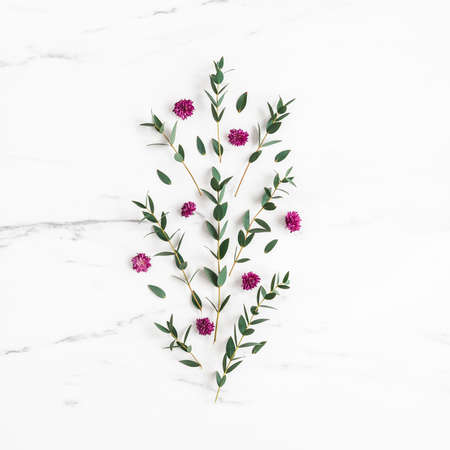 Flowers composition. Purple flowers and eucalyptus leaves on marble background. Flat lay, top view