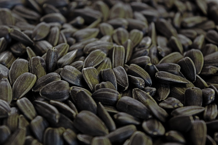 fill: image of sunflower seeds that fill the frame Stock Photo