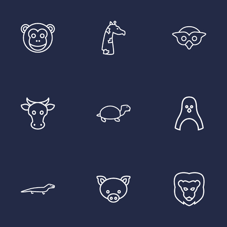 kine: Set Of 9 Beast Outline Icons Set.Collection Of Giraffe, Monkey, Owl And Other Elements.