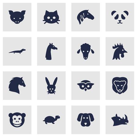 バニー、サイ、Tomcat と他の要素の 16 獣アイコン Set.Collection のセットです。