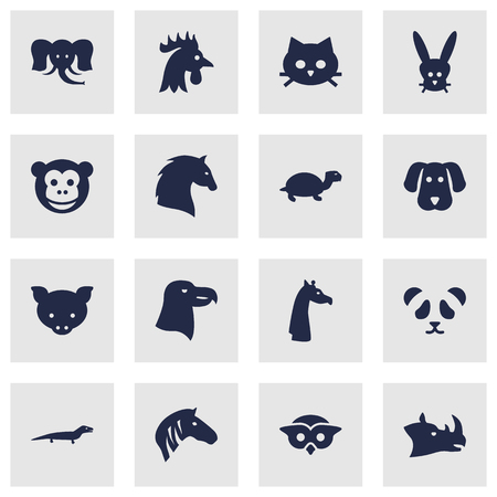 Set Of 16 Brute Icons Set.Collection Of Tortoise, Bear, Hoss And Other Elements.