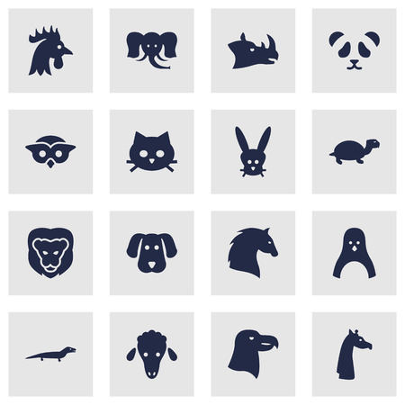 Set Of 16 Alive Icons Set.Collection Of Bunny, Rooster, Tortoise And Other Elements.