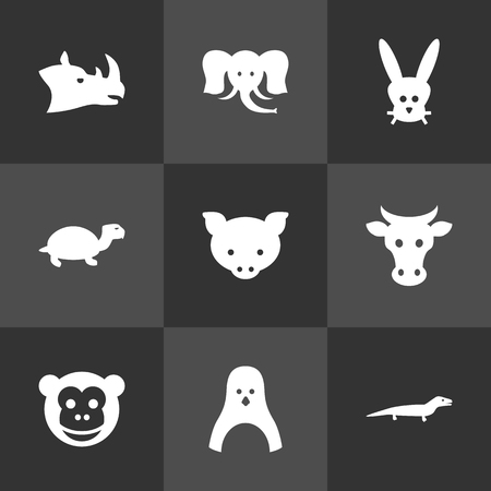 antarctic: Set Of 9 Beast Icons Set.Collection Of Rhinoceros, Hog, Kine And Other Elements.