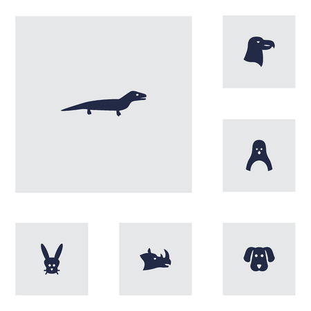 antarctic: Set Of 6 Alive Icons Set.Collection Of Aquila, Diver, Bunny And Other Elements.