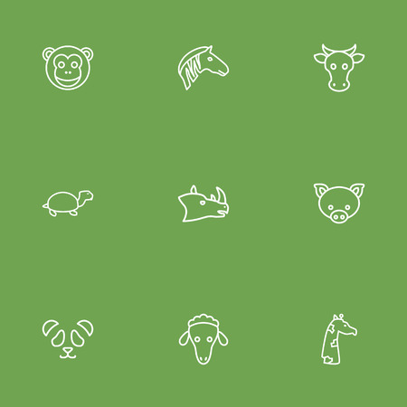 Set Of 9 Beast Outline Icons Set.Collection Of Giraffe, Turtle, Feline Bear And Other Elements.