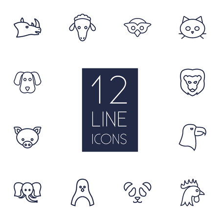 antarctic: Set Of 12 Brute Outline Icons Set.Collection Of Lion, Cat, Pig And Other Elements. Illustration