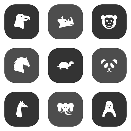 brute: Set Of 9 Brute Icons Set.Collection Of Ape, Aquila, Trunked Animal And Other Elements. Illustration