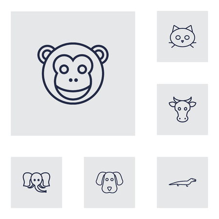Set Of 6 Alive Outline Icons Set.Collection Of Cat, Monkey, Dog And Other Elements.