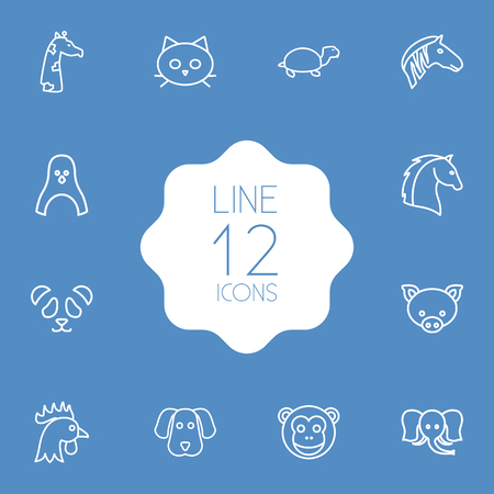Set Of 12 Beast Outline Icons Set.Collection Of Cock, Dog, Feline Bear And Other Elements. Illustration