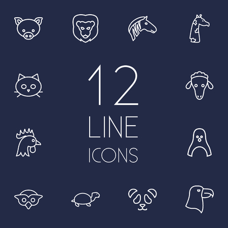 Set Of 12 Beast Outline Icons Set.Collection Of Penguin, Pig, Cat And Other Elements.