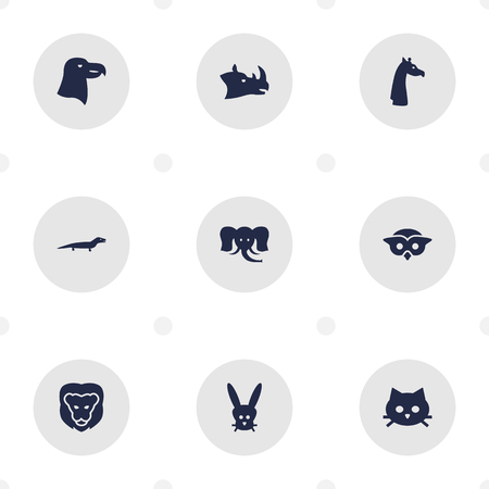 brute: Set Of 9 Brute Icons Set.Collection Of Night Fowl, Camelopard, Rhinoceros And Other Elements.
