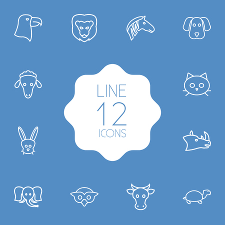 kine: Set Of 12 Beast Outline Icons Set.Collection Of Lion, Elephant, Eagle And Other Elements.