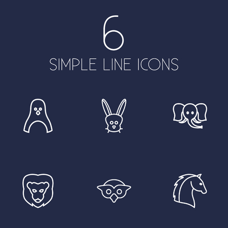 Set Of 6 Brute Outline Icons Set.Collection Of Lion, Penguin, Rabbit And Other Elements. Illustration