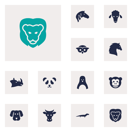 Set Of 12 Beast Icons Set.Collection Of Bear, Horse, Wildcat And Other Elements. Illustration