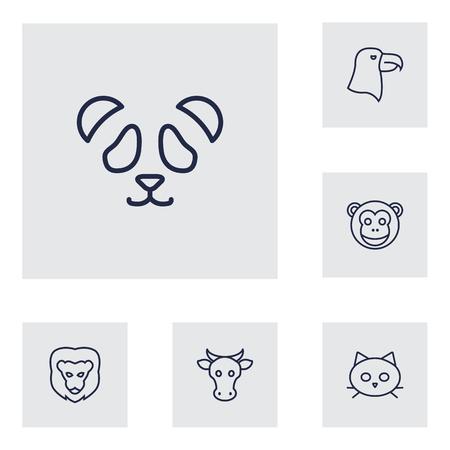 kine: Set Of 6 Beast Outline Icons Set.Collection Of Lion, Feline Bear, Eagle And Other Elements. Illustration