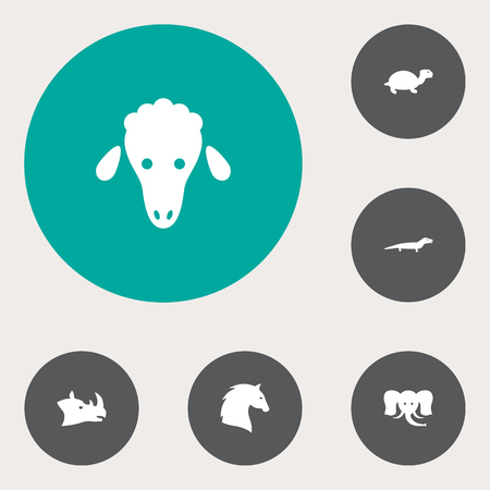 Set of 6 animals icon Illustration