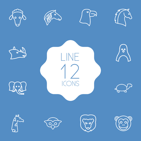 Set of 12 brute outline icons