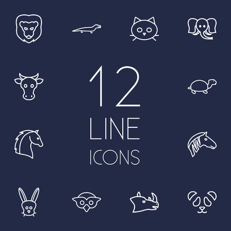 slow food: Set Of 12 Alive Outline Icons Set.Collection Of Owl, Lizard, Rabbit And Other Elements.