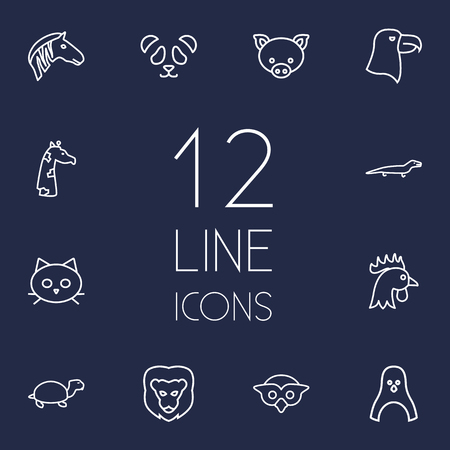 camelopard: Set Of 12 Zoology Outline Icons Set.Collection Of Feline Bear, Eagle, Cat And Other Elements.
