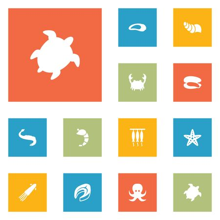 freshwater fish: Set Of 12 Food Icons Set.Collection Of Shell, Calamary, Devilfish And Other Elements.