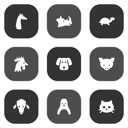 antarctic: Set Of 9 Zoology Icons Set.Collection Of Rhinoceros, Hound, Rooster And Other Elements.