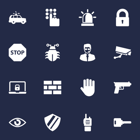 Set Of 16 Security Icons Set.Collection Of Remote, Look, Patrol And Other Elements.
