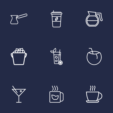 Set Of 9 Beverages Outline Icons Set.Collection Of Cappuccino, Ice Bucket, Coconut And Other Elements.