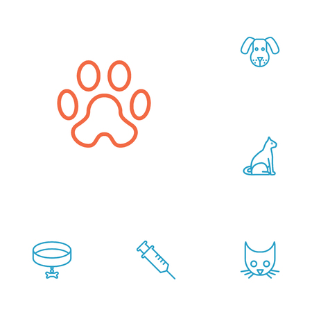 toe tag: Set Of 6 Animals Outline Icons Set.Collection Of Vaccination, Head, Dog And Other Elements.