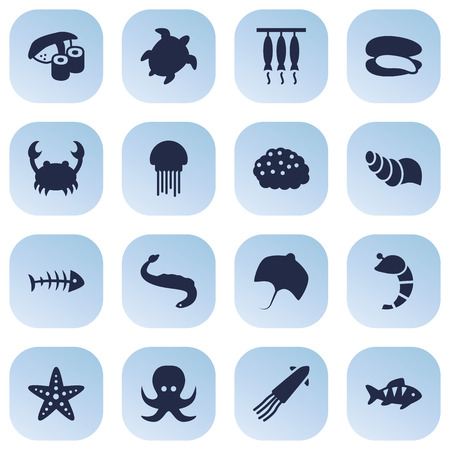 devilfish: Collection Of Stingray, Shell, Devilfish And Other Elements.  Set Of 16 Sea Icons Set.