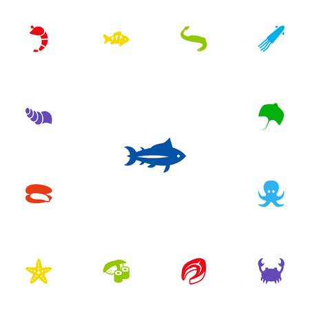 devilfish: Collection Of Beefsteak, Shell, Devilfish And Other Elements.  Set Of 13 Food Icons Set. Illustration