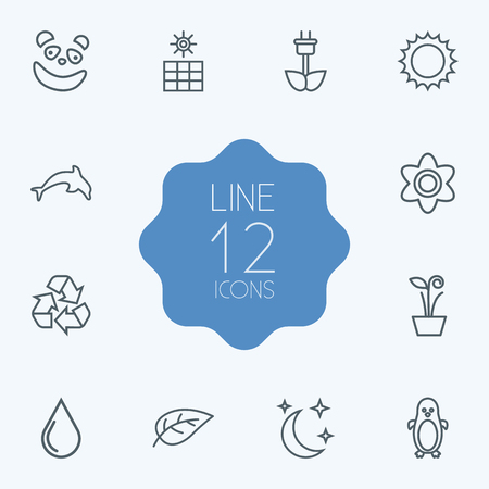 Set Of 12 Natural Outline Icons Set.Collection Of Panda, Eco Energy, Water Drop Elements. Illustration