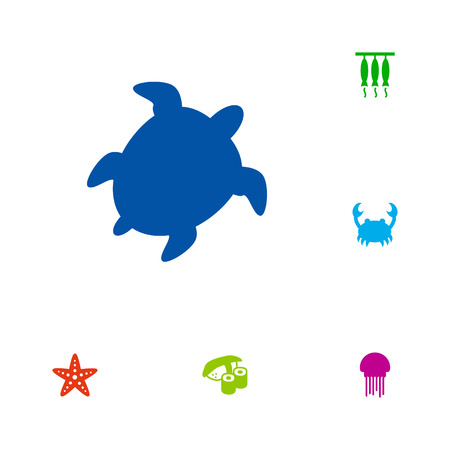 Set Of 6 Food Icons Set.Collection Of Tortoise, Lobster, Asteroid And Other Elements.