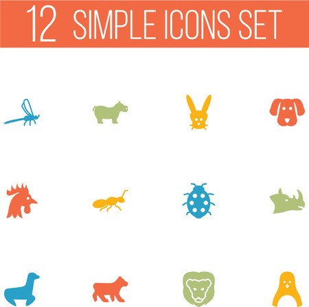Set Of 12 Zoo Icons Set.Collection Of Herculeanus, Damselfly, Rhinoceros And Other Elements.