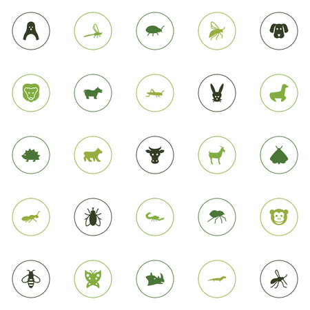 Set Of 25 Animal Icons Set.Collection Of Bumblebee, Housefly, Porcupine And Other Elements.