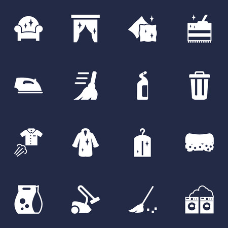Set Of 16 Cleanup Icons Set.Collection Of Washing Powder, Wisp, Garbage Container And Other Elements. Illustration