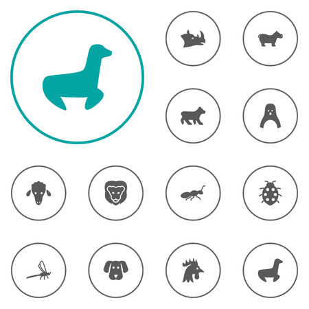 Set Of 12 Alive Icons Set.Collection Of Beetle, Polar, Lamb And Other Elements. Illustration
