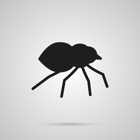 Isolated Spider Icon Symbol On Clean Background. Vector Arachnid Element In Trendy Style.