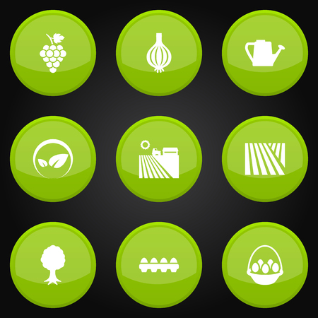 greenness: Set Of 9 Harvest Icons Set.Collection Of Ecology, Timber, Garlic And Other Elements.