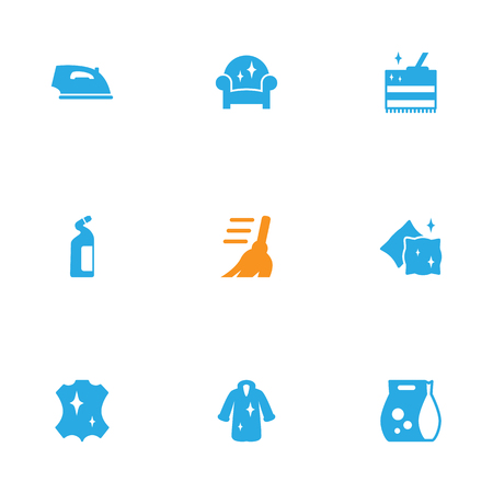 Set Of 9 Cleaning Icons Set.Collection Of Skin, Iron, Washing Powder And Other Elements.