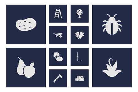 Set Of 12 Household Icons Set.Collection Of Plant, Staircase, Cutter And Other Elements.