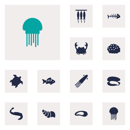Collection Of Clam, Medusa, Acne And Other Elements.  Set Of 12 Seafood Icons Set.