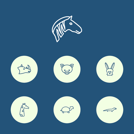 Set Of 7 Alive Outline Icons Set.Collection Of Turtle, Mammal, Rhino And Other Elements. Illustration
